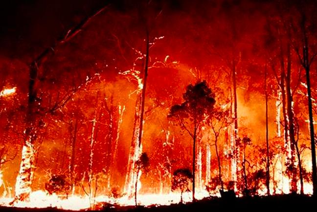 Australia, il giorno più caldo della storia: 40,9 gradi di media nazionale